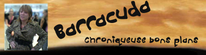 Barracudalogo_1